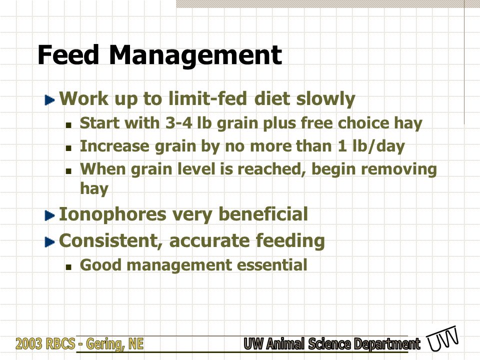 Feed Management Work up to limit-fed diet slowly Start with 3-4 lb grain plus free choice hay Increase grain by no more than 1 lb/day When grain level
