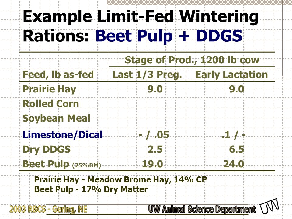 Example Limit-Fed Wintering Rations: Beet Pulp + DDGS Stage of Prod., 1200 lb cow Feed, lb as-fedLast 1/3 Preg.Early Lactation Prairie Hay 9.0 Rolled Corn Soybean Meal Limestone/Dical - /.05.1 / - Dry DDGS 2.5 6.5 Beet Pulp (25%DM) 19.024.0 Prairie Hay - Meadow Brome Hay, 14% CP Beet Pulp - 17% Dry Matter
