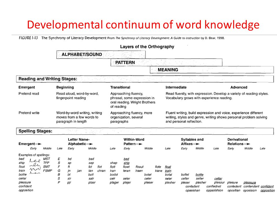 Developmental continuum of word knowledge