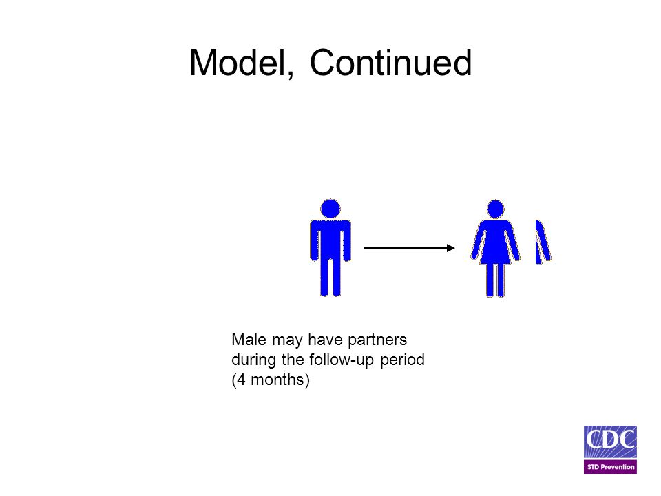 Model, Continued Male may have partners during the follow-up period (4 months)