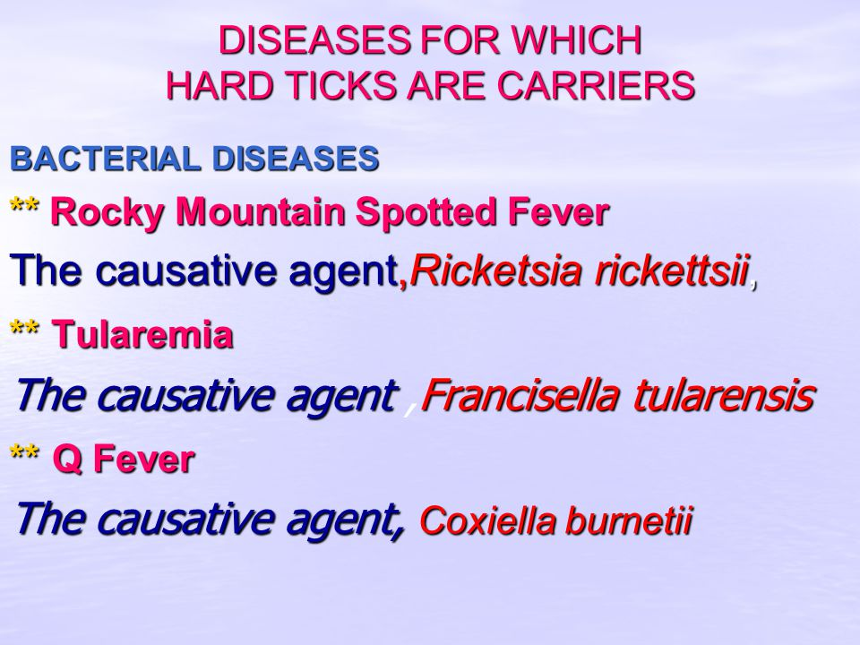 DISEASES FOR WHICH HARD TICKS ARE CARRIERS BACTERIAL DISEASES BACTERIAL DISEASES ** Rocky Mountain Spotted Fever The causative agent,Ricketsia rickett