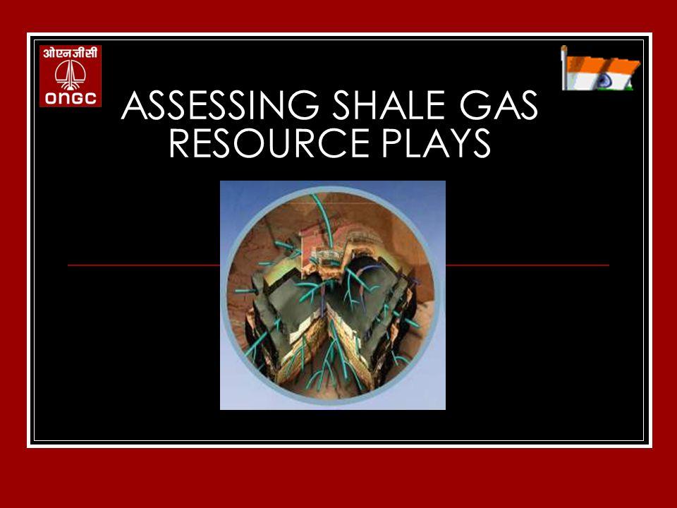 Shale Gas Resource Estimation