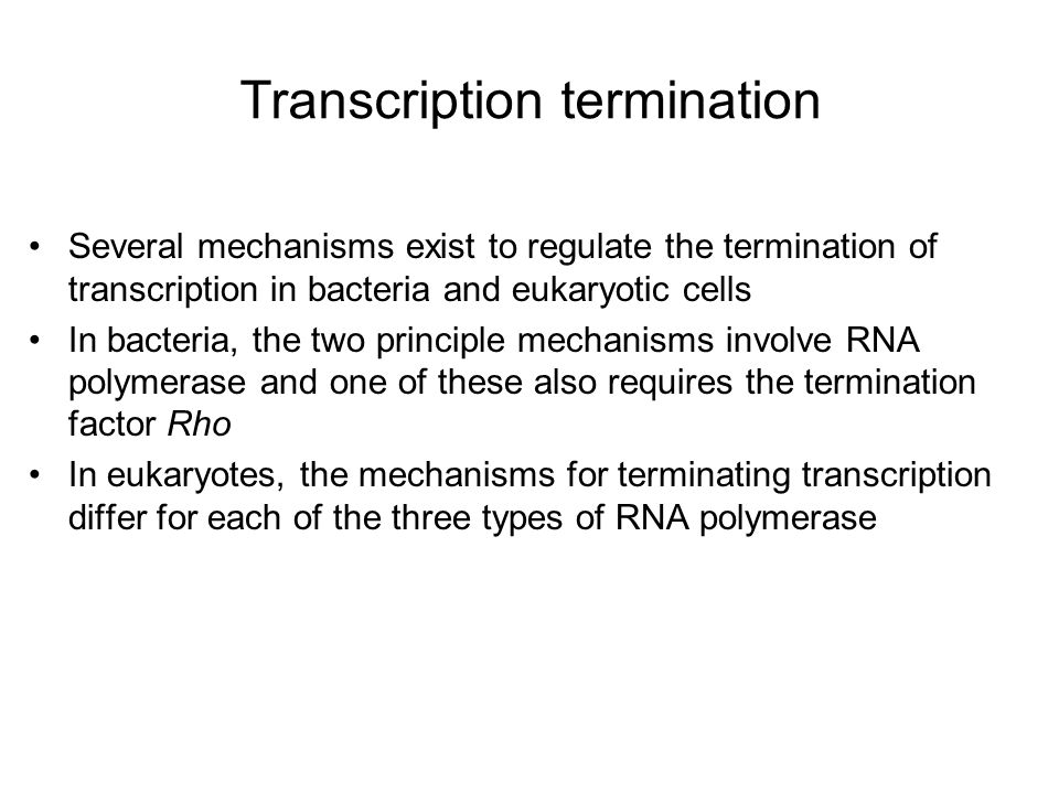 Transcription termination Several mechanisms exist to regulate the termination of transcription in bacteria and eukaryotic cells In bacteria, the two principle mechanisms involve RNA polymerase and one of these also requires the termination factor Rho In eukaryotes, the mechanisms for terminating transcription differ for each of the three types of RNA polymerase