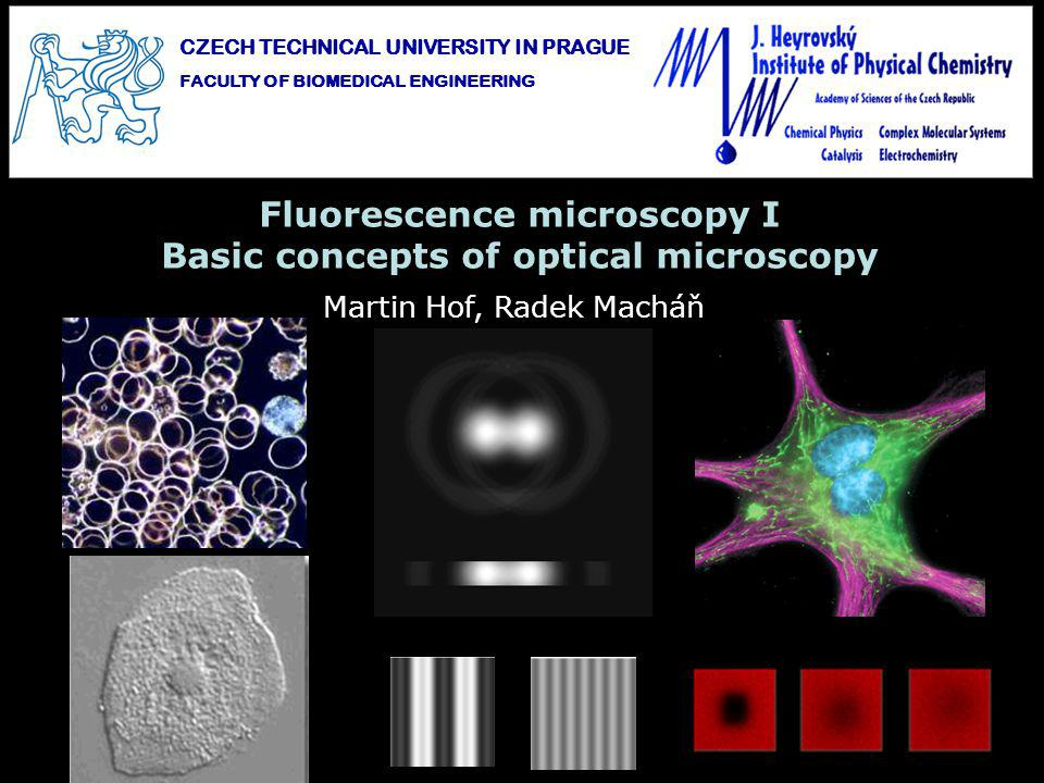 Dark field microscopy: Objects with a sharp rise in refraction index part-illumination of the specimen scattered light collected by objective bright object on dark background