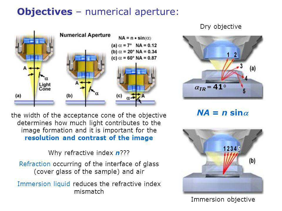 Objectives – immersion liquids: immersion oils – chosen to match closely the refractive index of glass n G = 1.52 oilvs.water water – n W = 1.33, worse match, however, biological samples consist mainly of water and water immersion is better for imaging thick biological samples objectives have corrections for aberrations introduced by the cover glass of given thickness and refractive index.