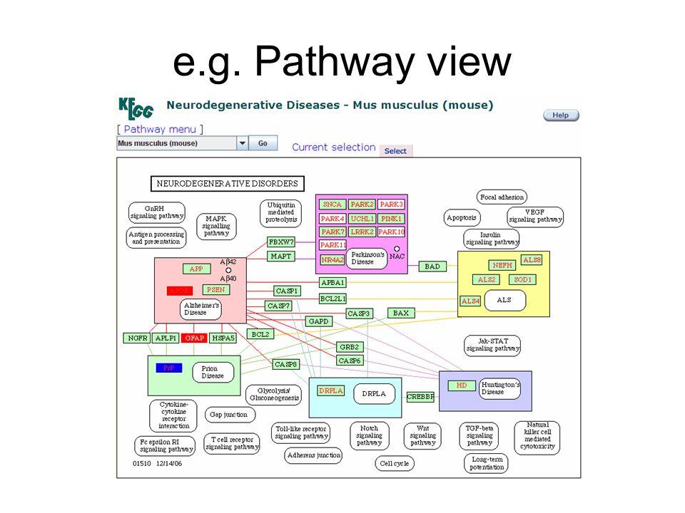 e.g. Pathway view