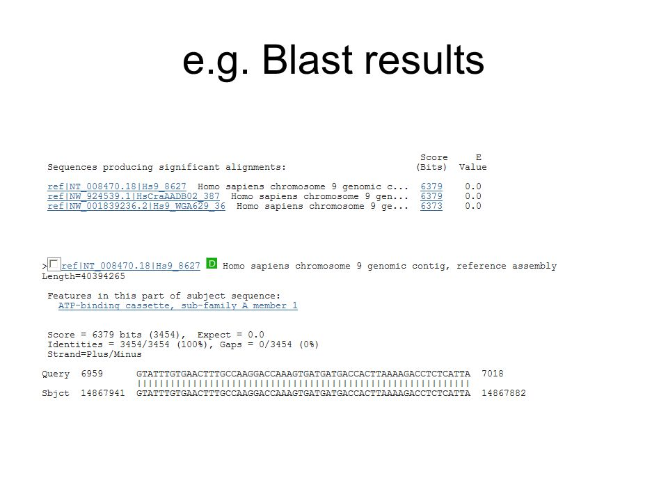 e.g. Blast results