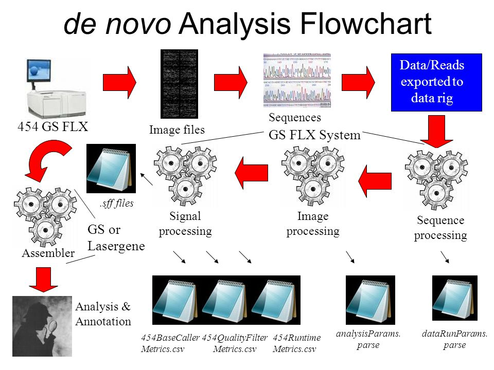 de novo Analysis Flowchart Data/Reads exported to data rig 454 GS FLX Image files Sequences Sequence processing dataRunParams.