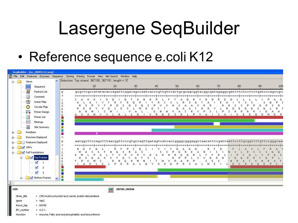 Lasergene SeqBuilder Reference sequence e.coli K12