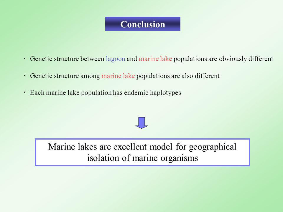 Conclusion Marine lakes are excellent model for geographical isolation of marine organisms ・ Genetic structure between lagoon and marine lake populati