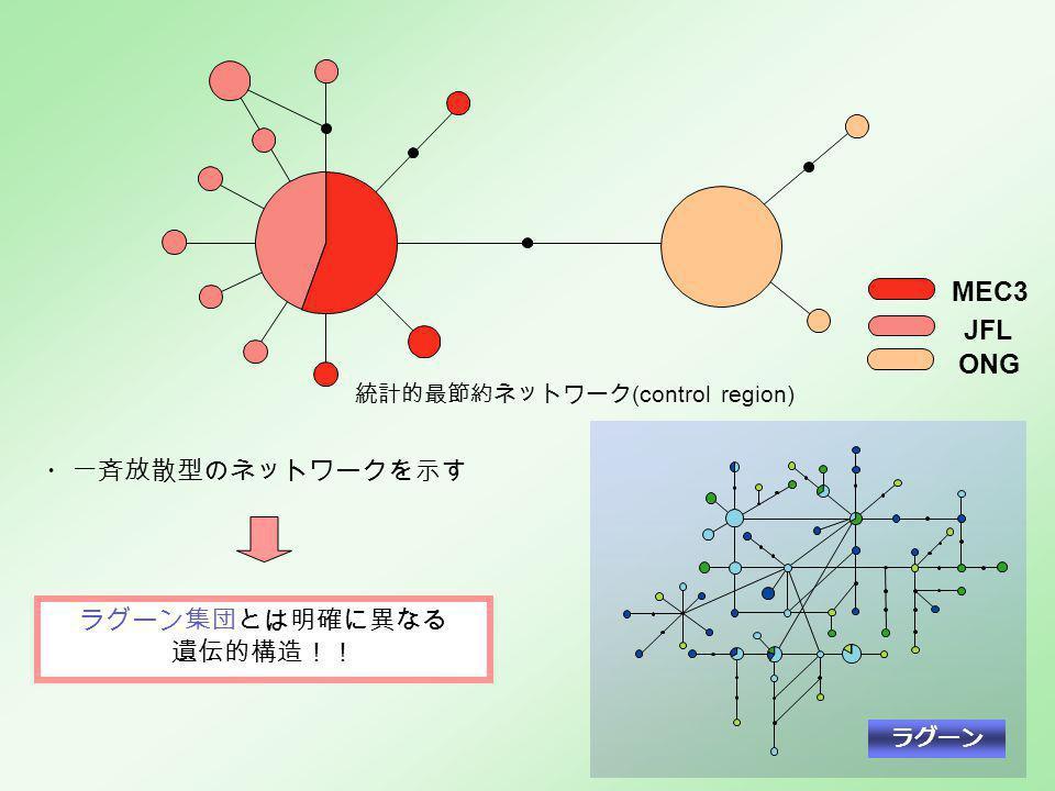 ラグーン ・一斉放散型のネットワークを示す ラグーン集団とは明確に異なる 遺伝的構造!! JFL MEC3 ONG 統計的最節約ネットワーク (control region)