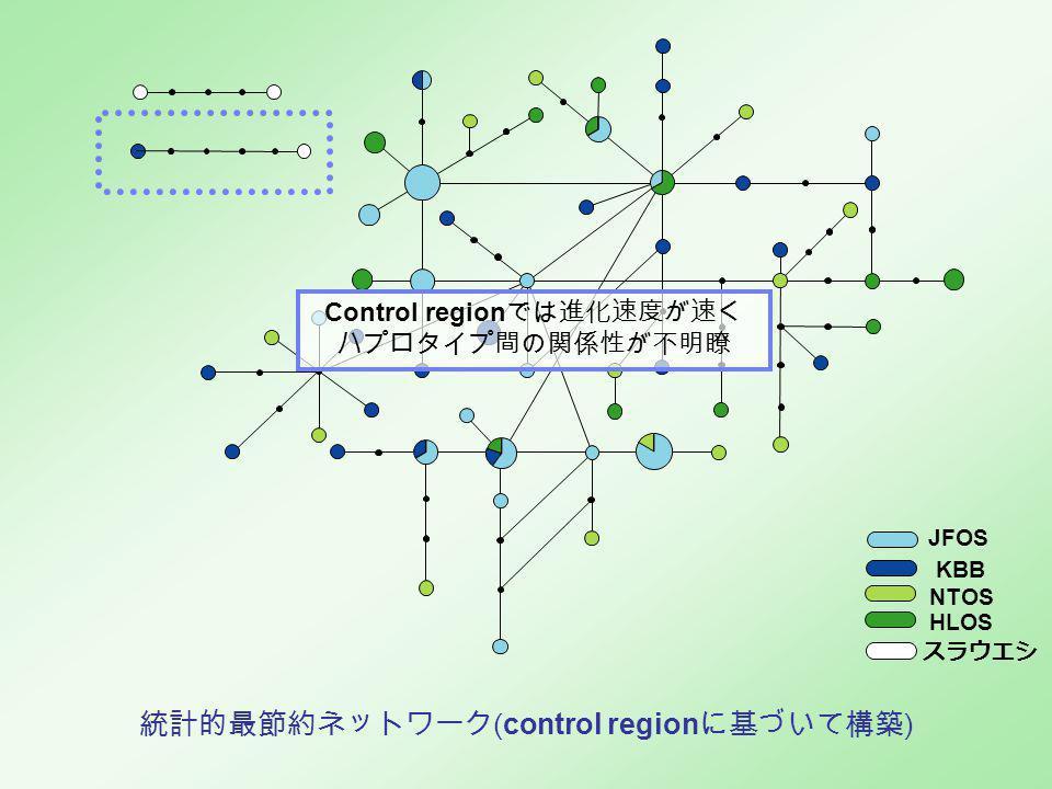 KBB JFOS NTOS HLOS スラウエシ 統計的最節約ネットワーク (control region に基づいて構築 ) Control region では進化速度が速く ハプロタイプ間の関係性が不明瞭