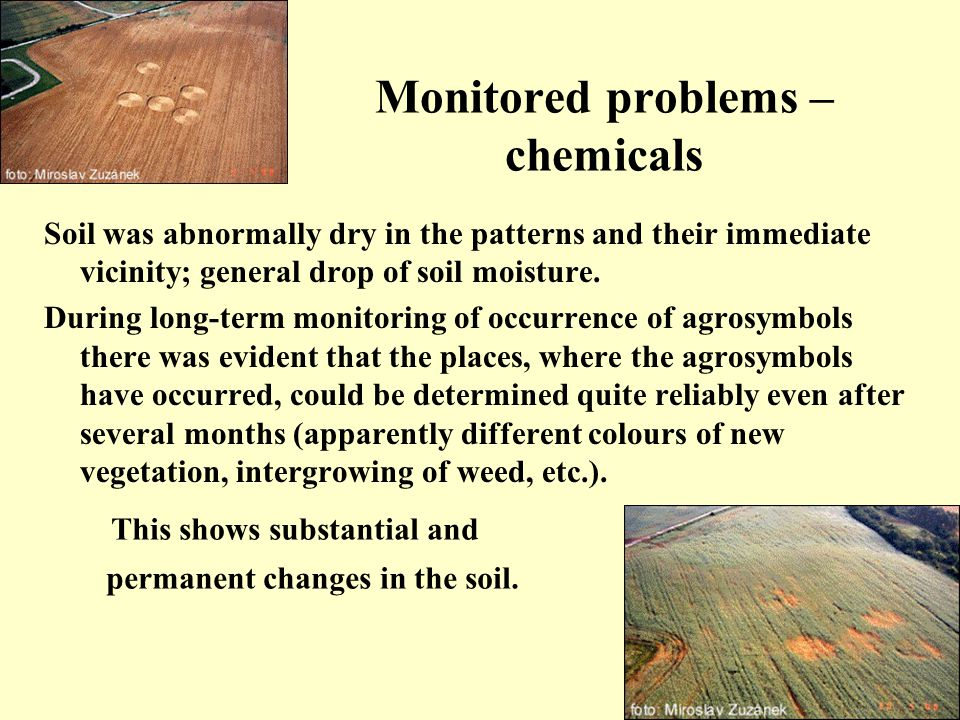 Monitored problems – chemicals Soil was abnormally dry in the patterns and their immediate vicinity; general drop of soil moisture.
