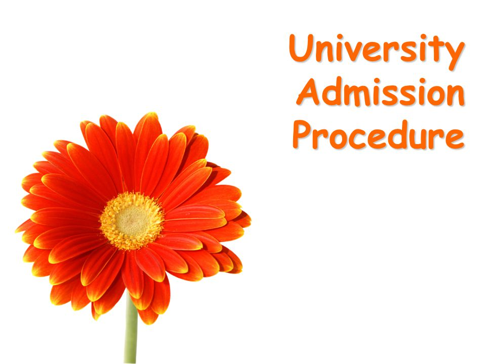 University Admission Procedure