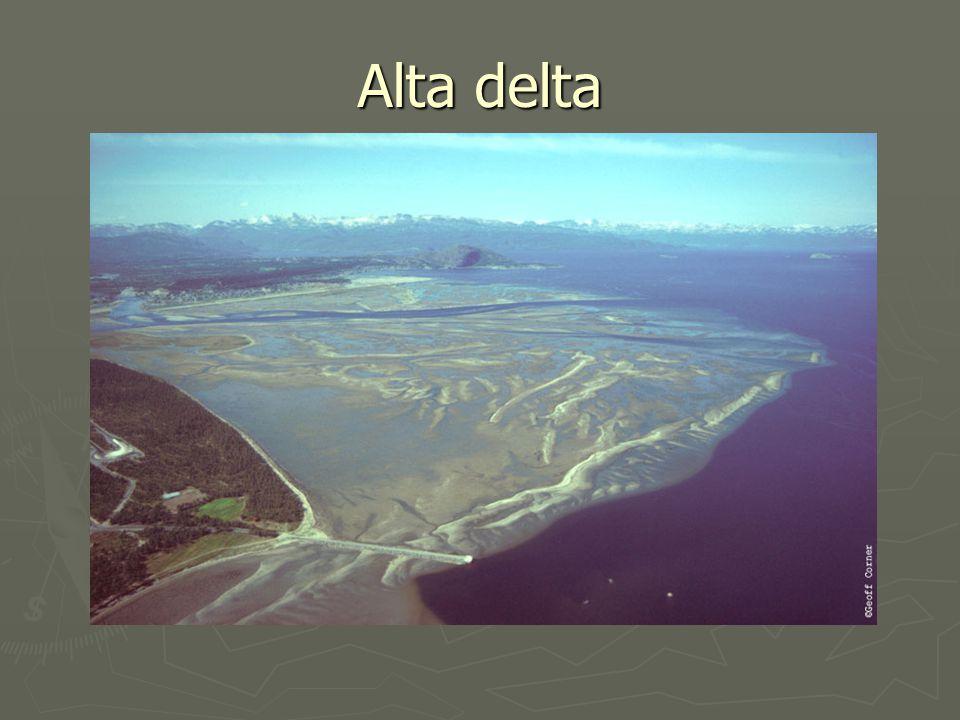 Alta delta