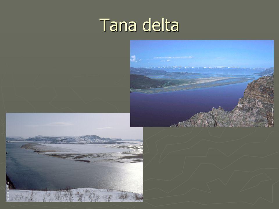 Tana delta