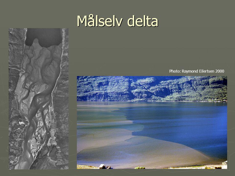 Målselv delta Photo: Raymond Eilertsen 2000