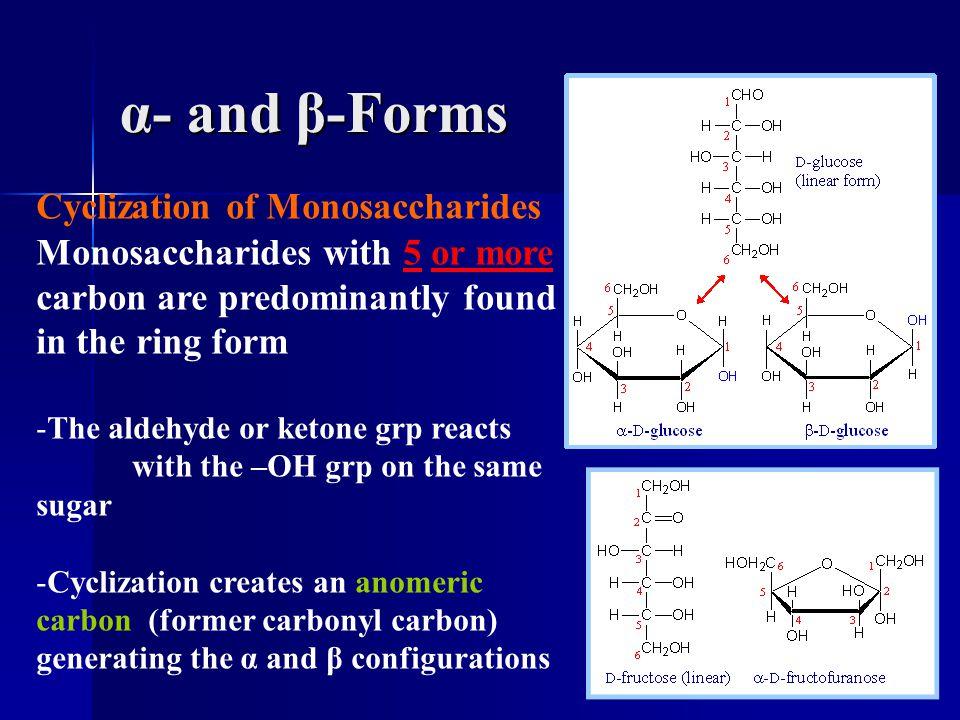 α- and β-Forms Cyclization of Monosaccharides Monosaccharides with 5 or more carbon are predominantly found in the ring form -The aldehyde or ketone g