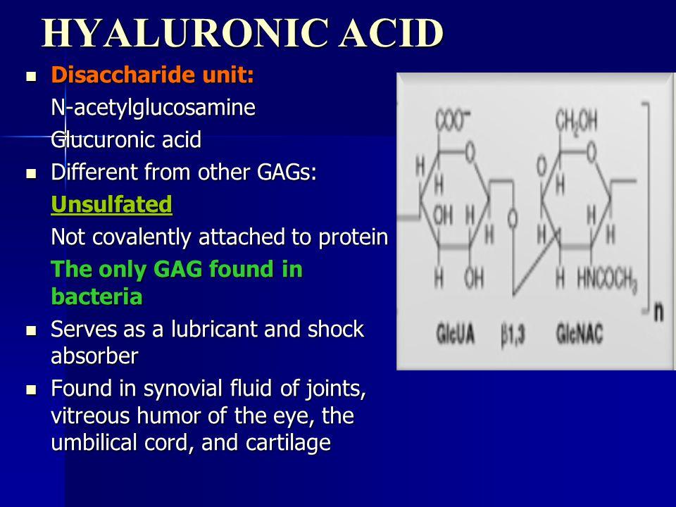 HYALURONIC ACID Disaccharide unit: Disaccharide unit:N-acetylglucosamine Glucuronic acid Different from other GAGs: Different from other GAGs:Unsulfat