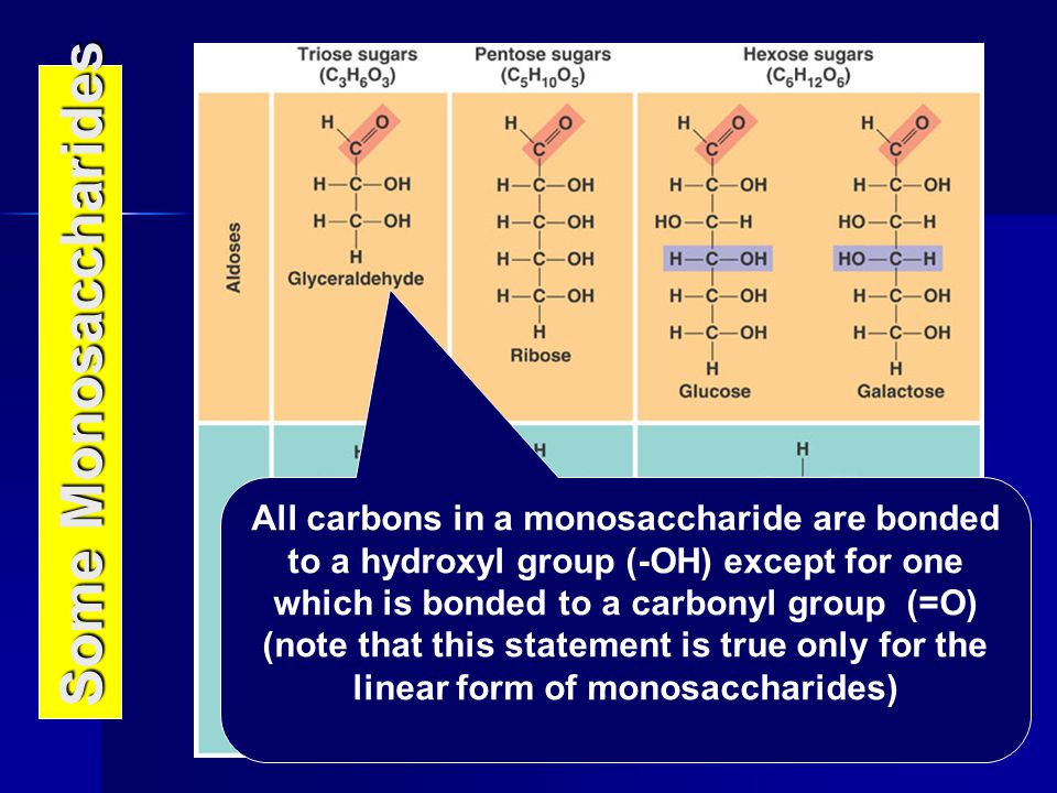 Some Monosaccharides All carbons in a monosaccharide are bonded to a hydroxyl group (-OH) except for one which is bonded to a carbonyl group (=O) (not