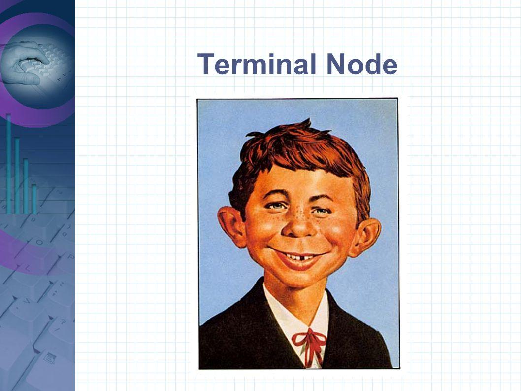 Terminal Node
