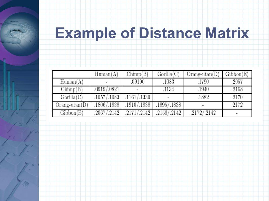 Example of Distance Matrix