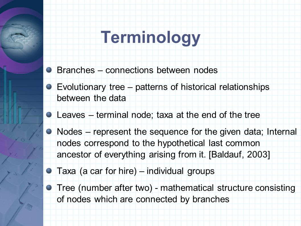 Terminology Branches – connections between nodes Evolutionary tree – patterns of historical relationships between the data Leaves – terminal node; taxa at the end of the tree Nodes – represent the sequence for the given data; Internal nodes correspond to the hypothetical last common ancestor of everything arising from it.