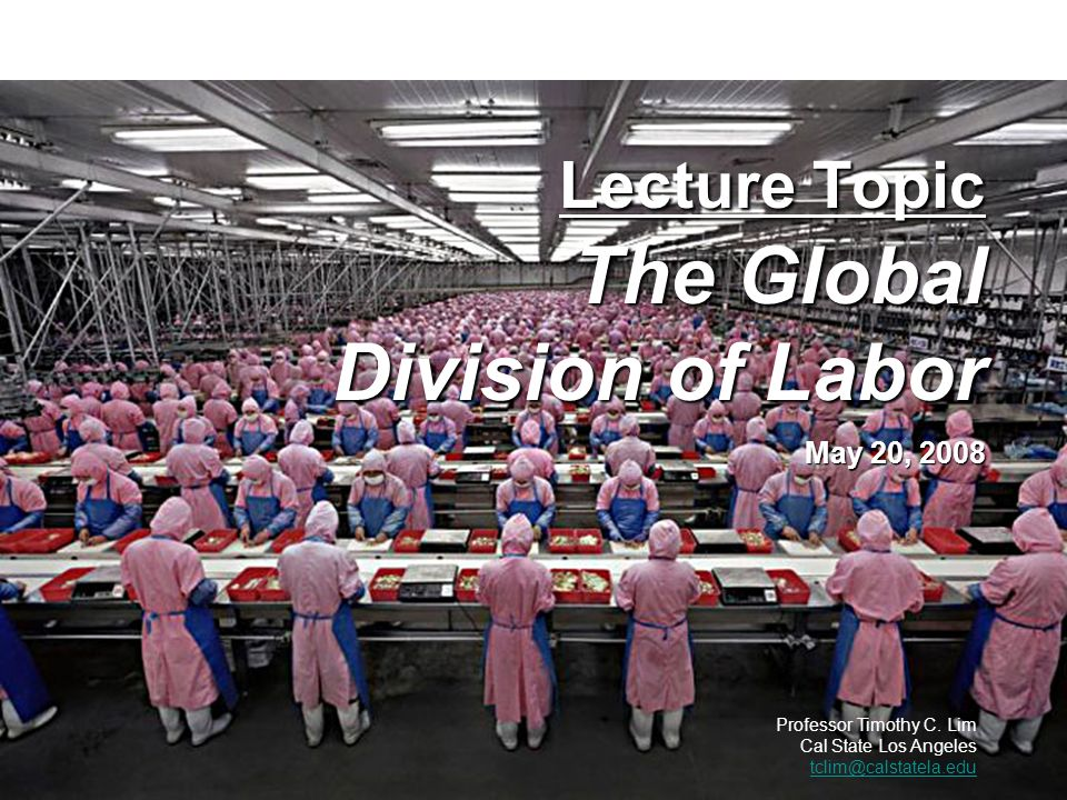 Lecture Topic The Global Division of Labor May 20, 2008 Professor Timothy C. Lim Cal State Los Angeles tclim@calstatela.edu tclim@calstatela.edu POLS/