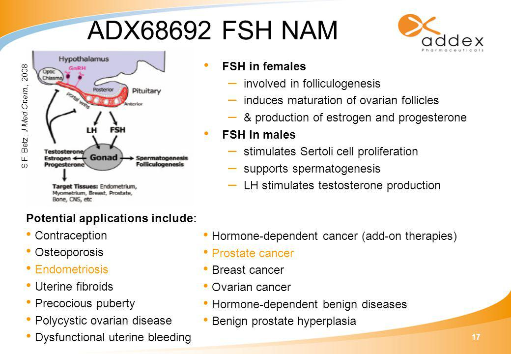 17 ADX68692 FSH NAM FSH in females – involved in folliculogenesis – induces maturation of ovarian follicles – & production of estrogen and progesterone FSH in males – stimulates Sertoli cell proliferation – supports spermatogenesis – LH stimulates testosterone production S.F.