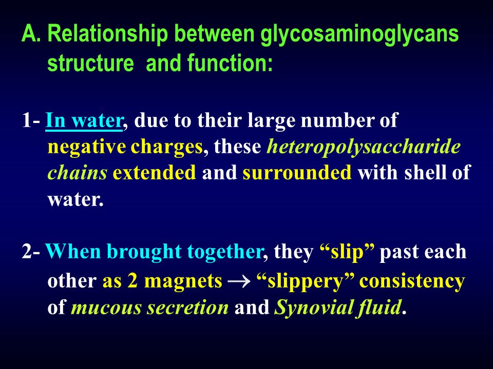 A.Relationship between glycosaminoglycans structure and function: 1- In water, due to their large number of negative charges, these heteropolysacchari