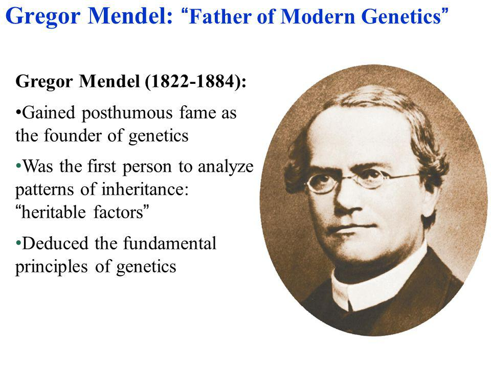 Each pair of alleles assorts independently of the other pairs of alleles during gamete formation (the inheritance of one character has no effect on the inheritance of another) Mendel's Law of Independent Assortment