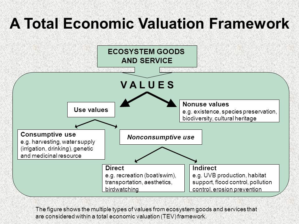 ECOSYSTEM GOODS AND SERVICE Use values Nonuse values e.g.