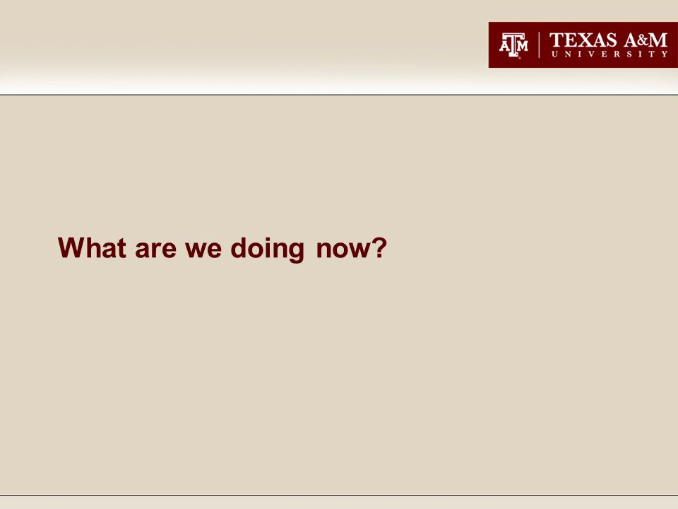 So…..what did we do at Texas A&M