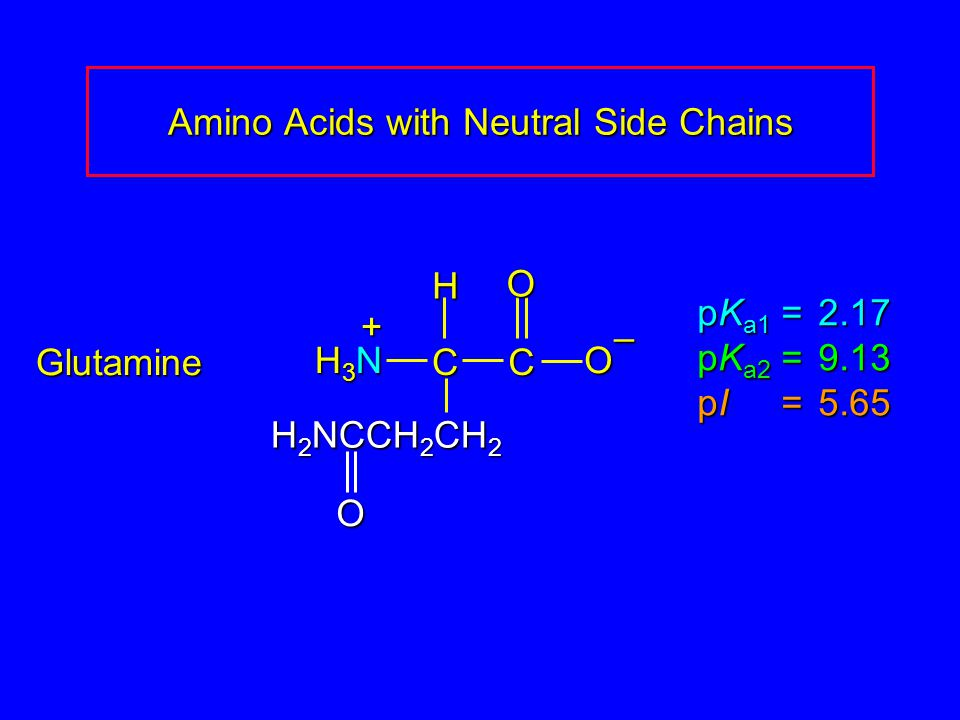 Amino Acids with Neutral Side Chains Glutamine pK a1 = 2.17 pK a2 =9.13 pI =5.65 H3NH3NH3NH3N CCOO – H + H 2 NCCH 2 CH 2 O