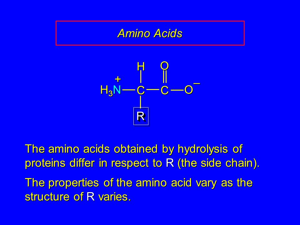 Amino Acids CCOO – RR H H3NH3NH3NH3N + The amino acids obtained by hydrolysis of proteins differ in respect to R (the side chain). The properties of t