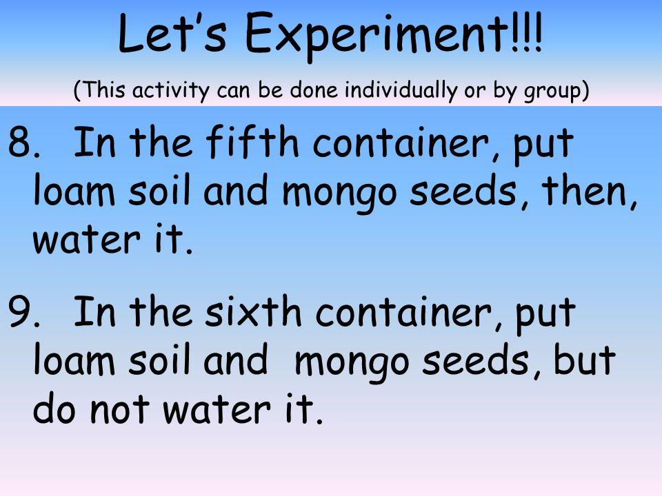 Let's Experiment!!.