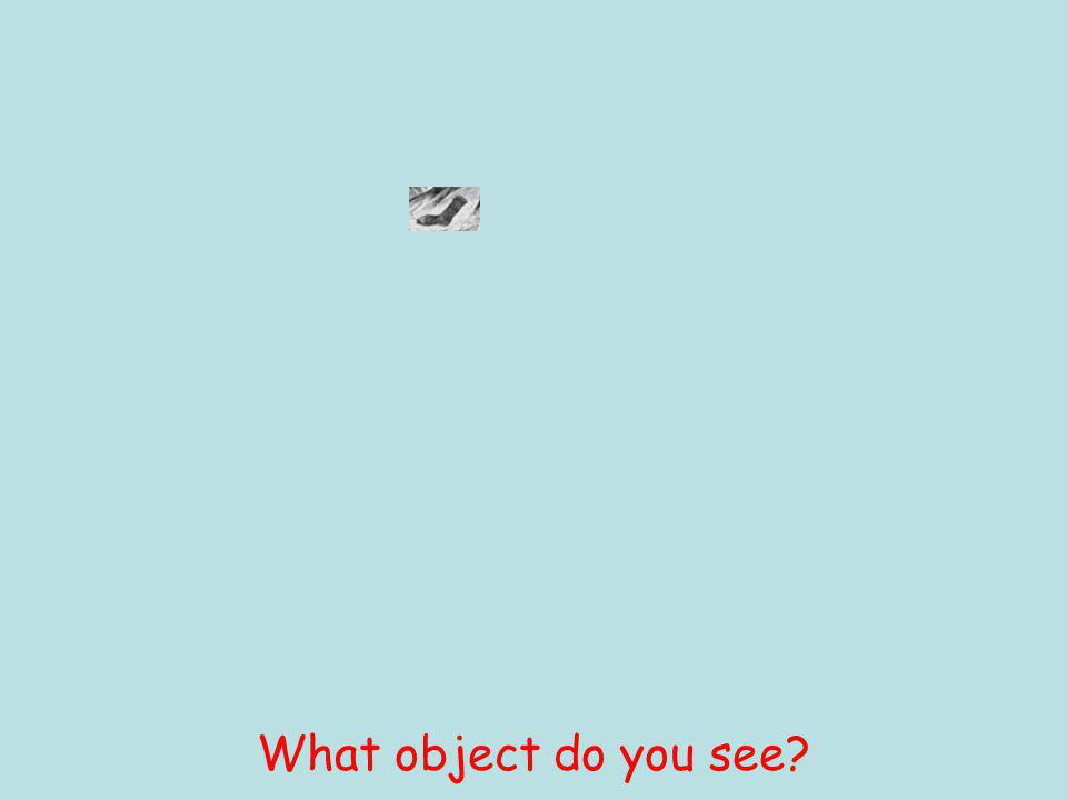 What object do you see