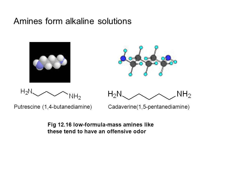 Amines form alkaline solutions Putrescine (1,4-butanediamine)Cadaverine(1,5-pentanediamine) Fig 12.16 low-formula-mass amines like these tend to have