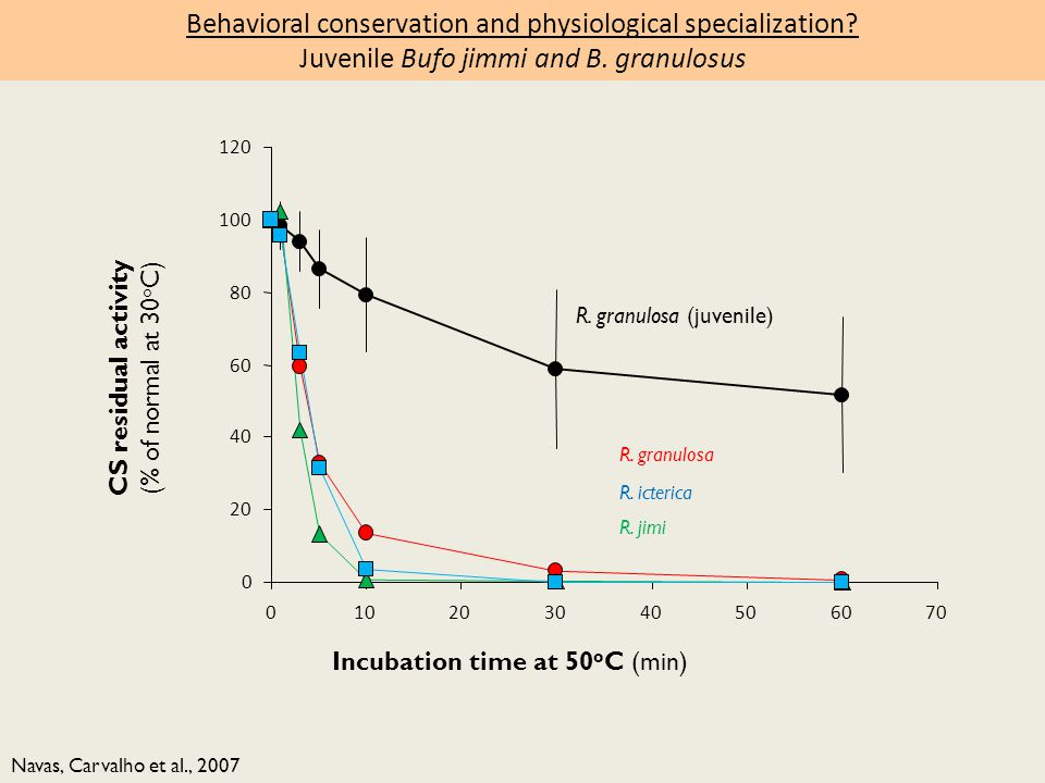 Navas, Carvalho et al., 2007 CS residual activity (% of normal at 30 o C) Incubation time at 50 o C (min) R.