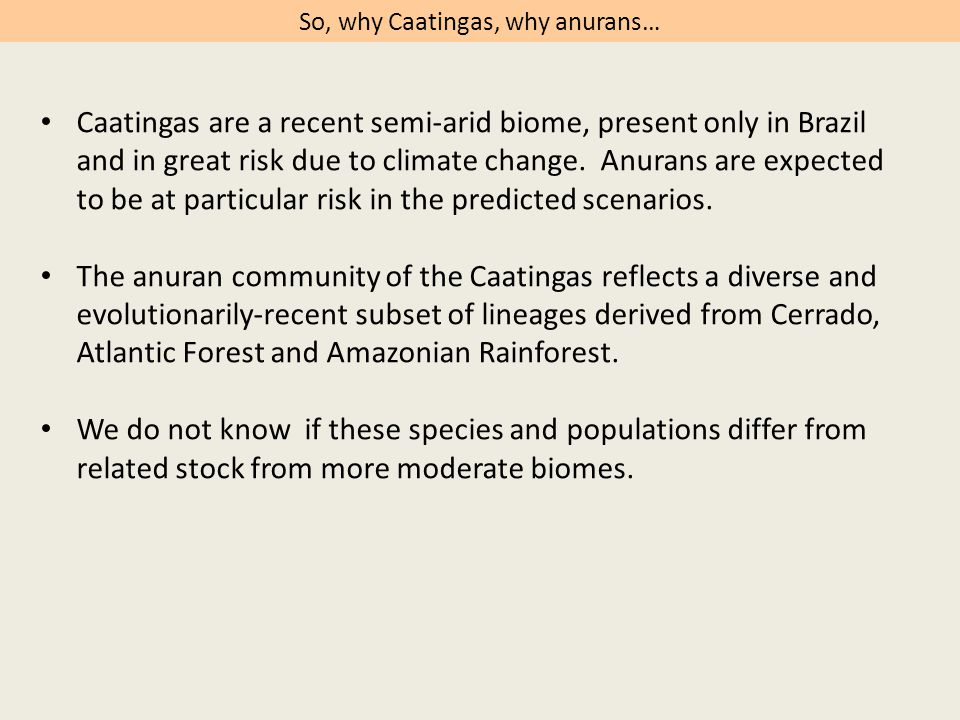 Anuran life in the Caatinga involves behavioral, ecological and physiological traits that vary in relative importance among lineages.