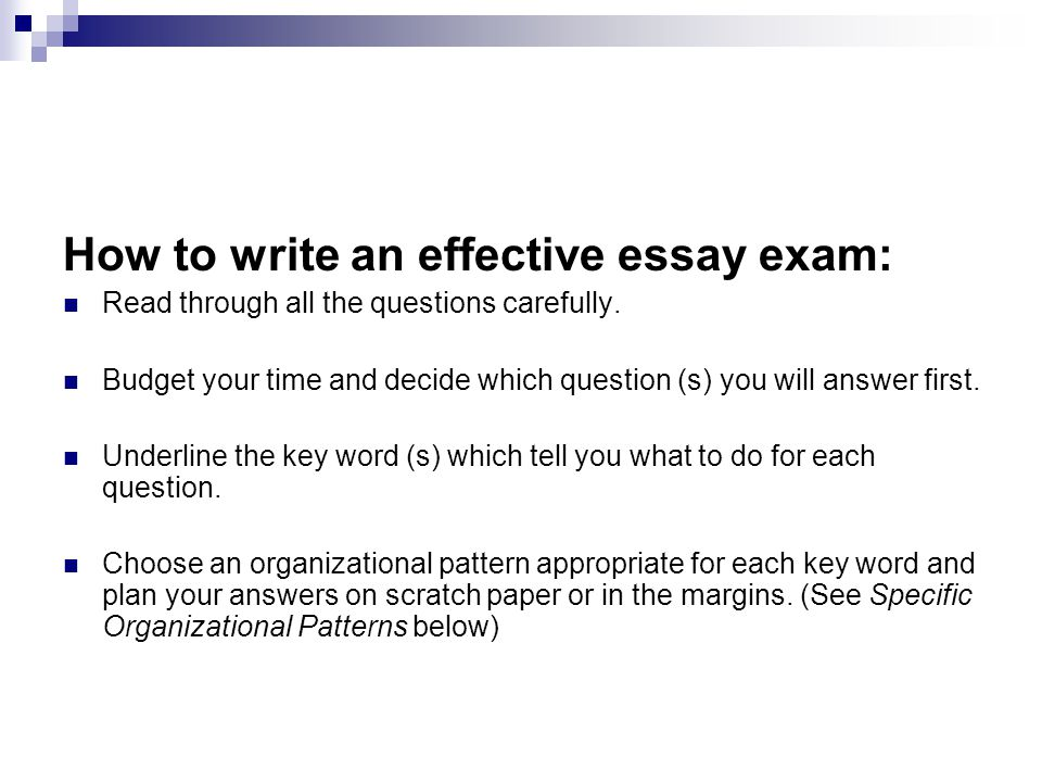 how to write an essay examples free