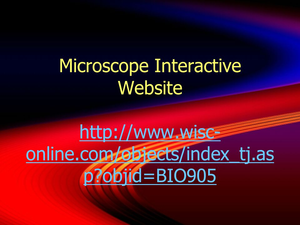 Microscope Interactive Website http://www.wisc- online.com/objects/index_tj.as p objid=BIO905 http://www.wisc- online.com/objects/index_tj.as p objid=BIO905