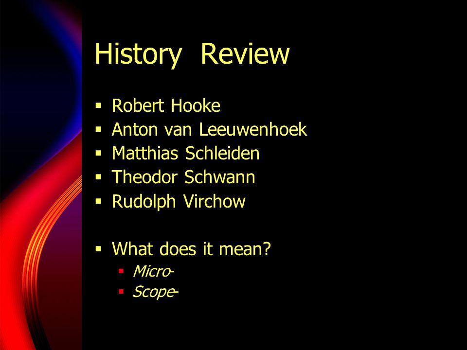 History Review  Robert Hooke  Anton van Leeuwenhoek  Matthias Schleiden  Theodor Schwann  Rudolph Virchow  What does it mean.