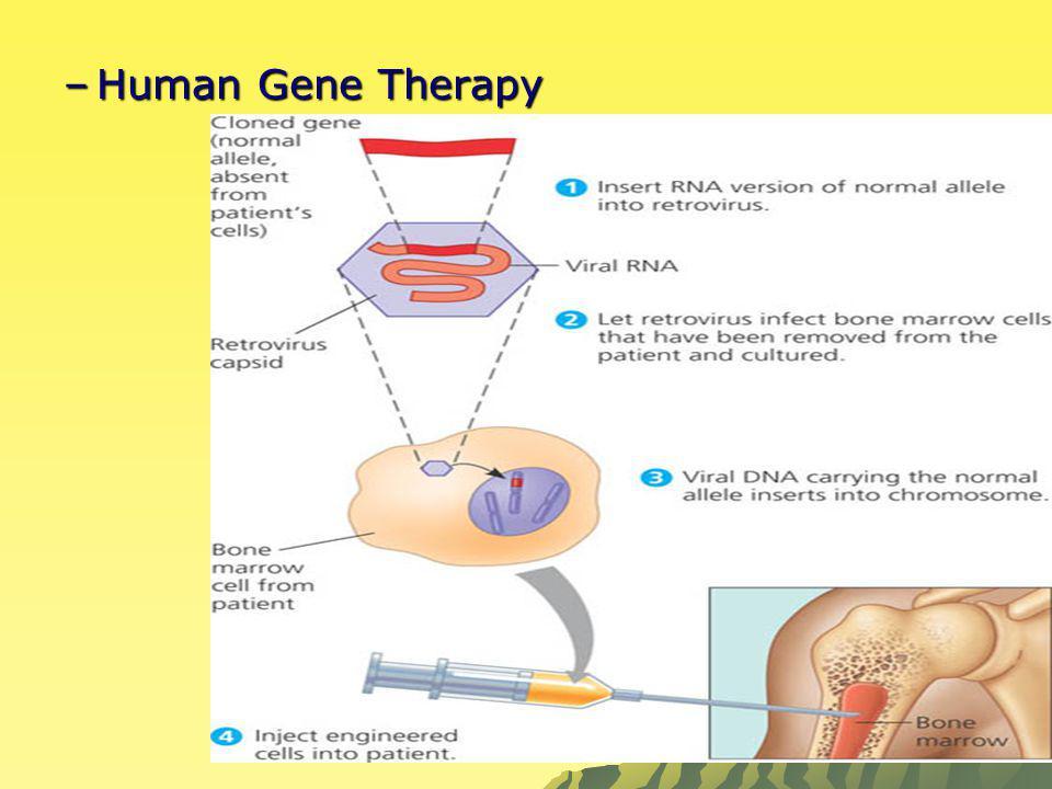 –Human Gene Therapy