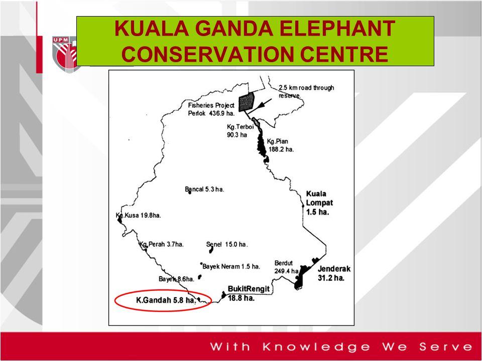 KUALA GANDA ELEPHANT CONSERVATION CENTRE