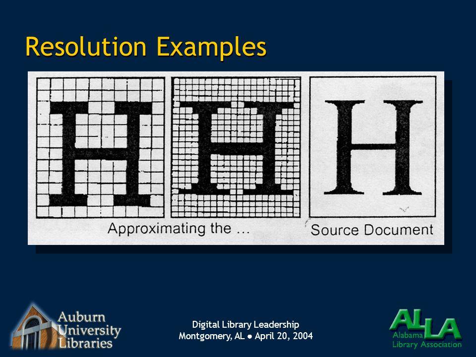 Digital Library Leadership Montgomery, AL ● April 20, 2004 Resolution Examples
