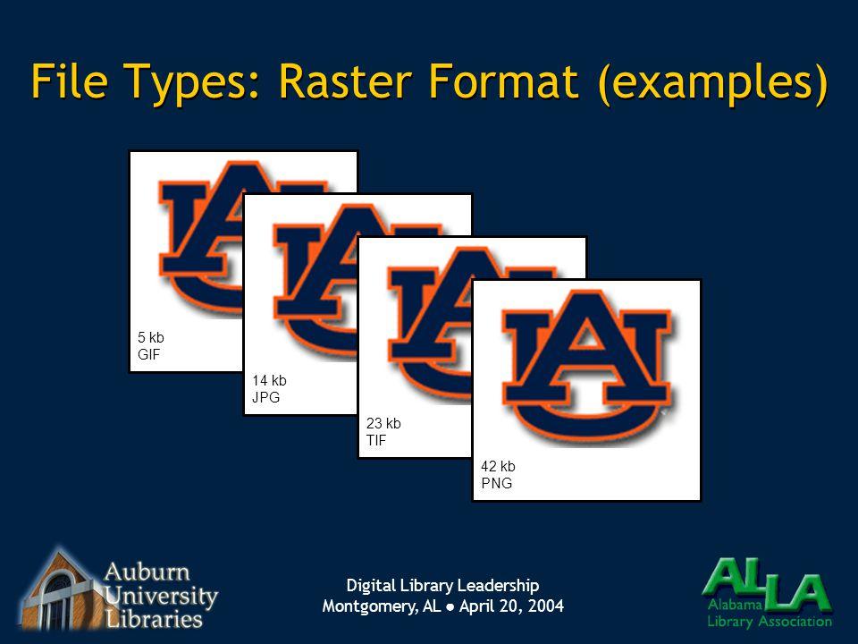 Digital Library Leadership Montgomery, AL ● April 20, 2004 File Types: Raster Format (examples) 5 kb GIF 14 kb JPG 23 kb TIF 42 kb PNG