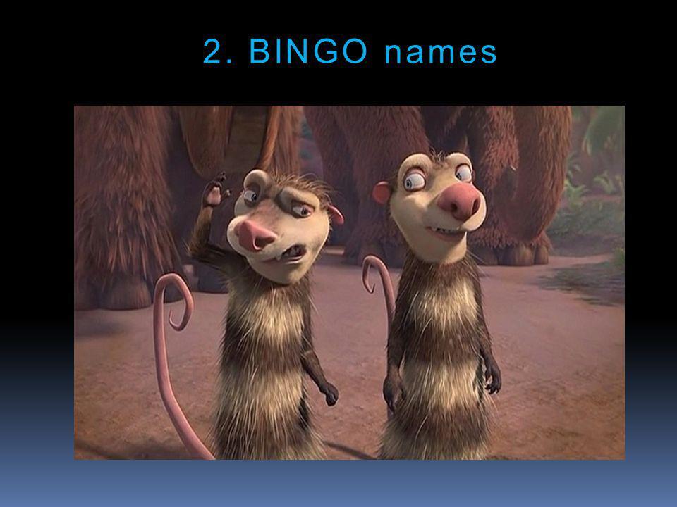 2. BINGO names