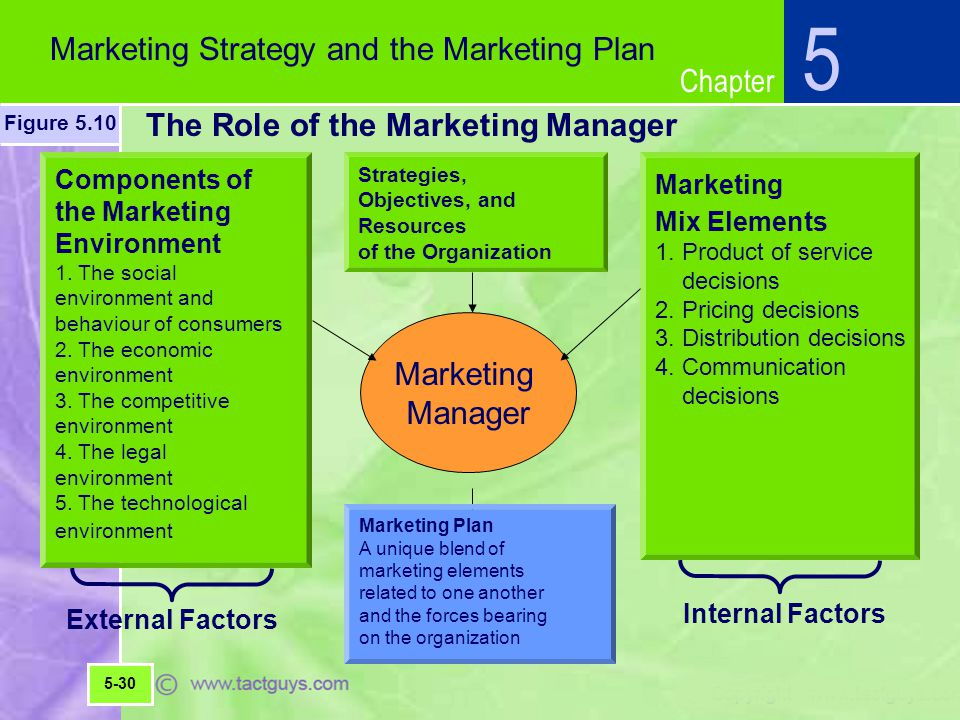 Chapter The Role of the Marketing Manager 5 Marketing Strategy and the Marketing Plan Figure 5.10 5-30 Strategies, Objectives, and Resources of the Organization Components of the Marketing Environment 1.