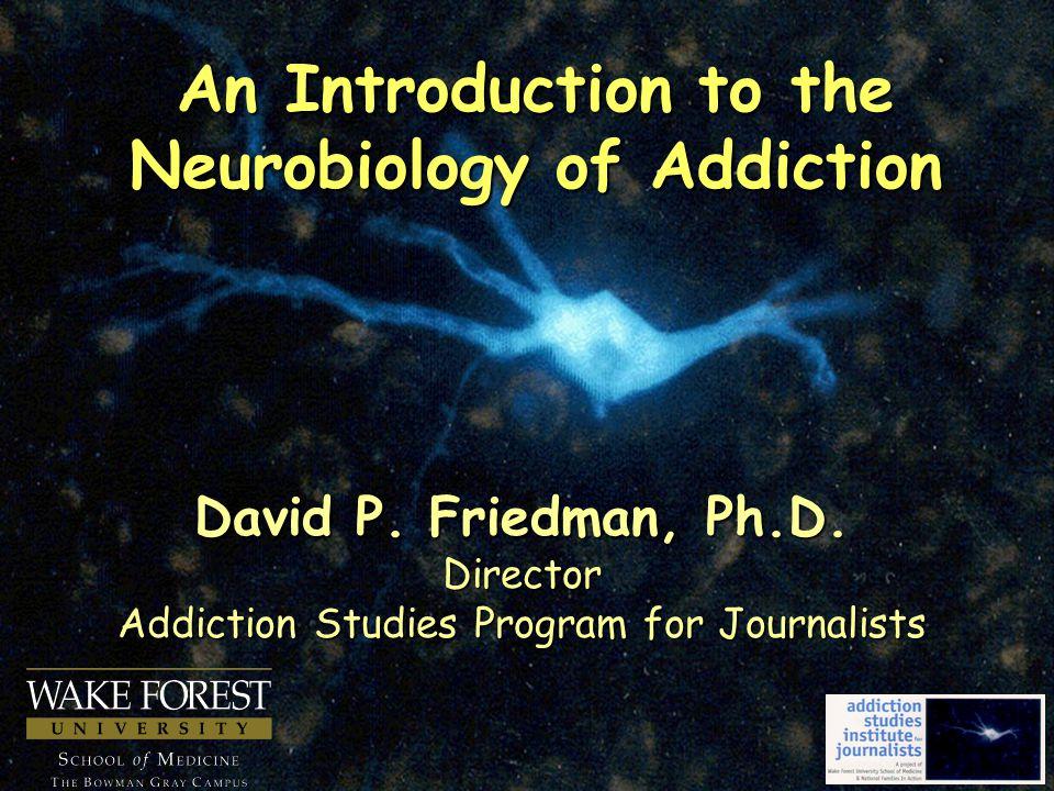 David P.Friedman, Ph.D.